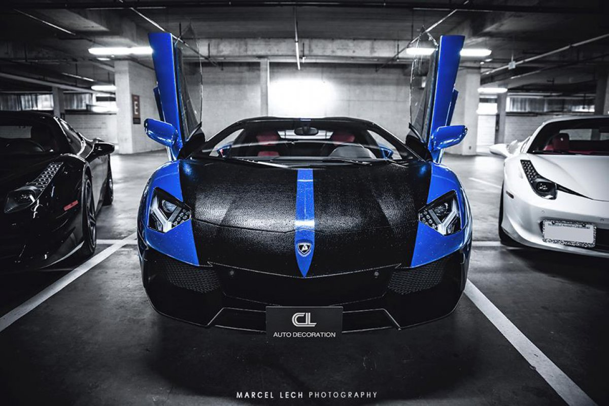 Chrome Blue Snake Skin AVENTADOR + 458 by Marcel Lech Photography hypercars  (3)